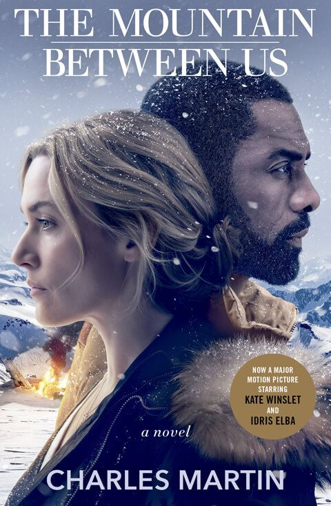 The Mountain Between Us 2017 Hindi Dubbed BRRip movie poster
